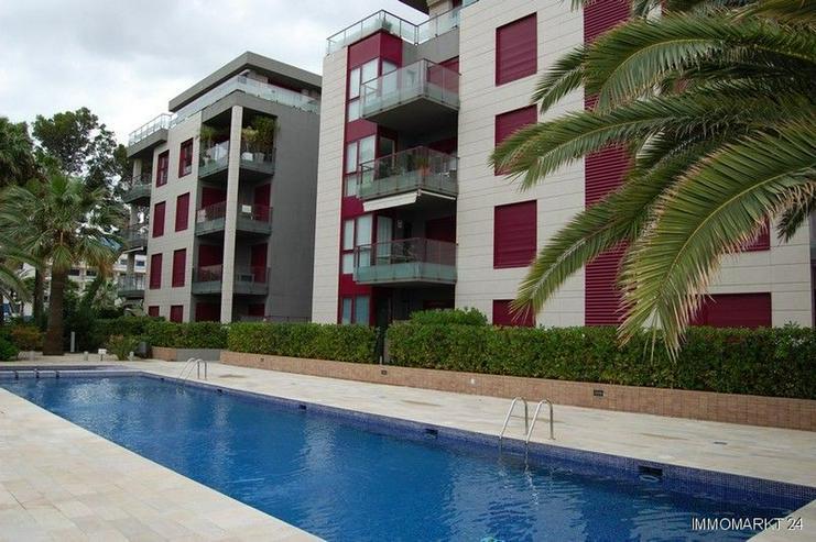 Bild 2: Sehr schönes Appartement in Strandnähe