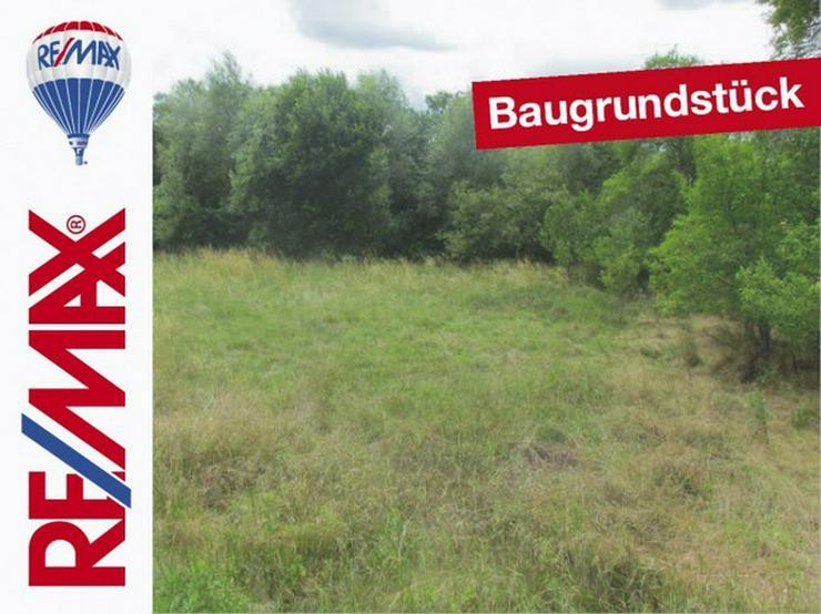 Großes Baugrundstück in ländlicher Lage - Grundstück kaufen - Bild 1