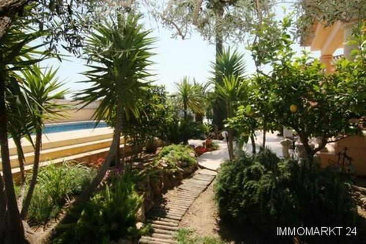 Bild 6: Wunderschönes, strandnahes Villen-Anwesen mit kleiner Orangenplantage in Deveses