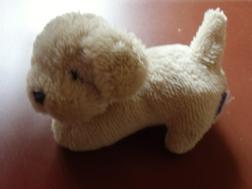 Hund Magnetf��en - Teddyb�ren & Kuscheltiere - Bild 1