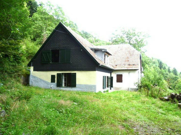 Elsass: Doppelhaushälfte in Allein- und Südhanglage ca. 110 m² Wohnfläche, knapp 7200 ...
