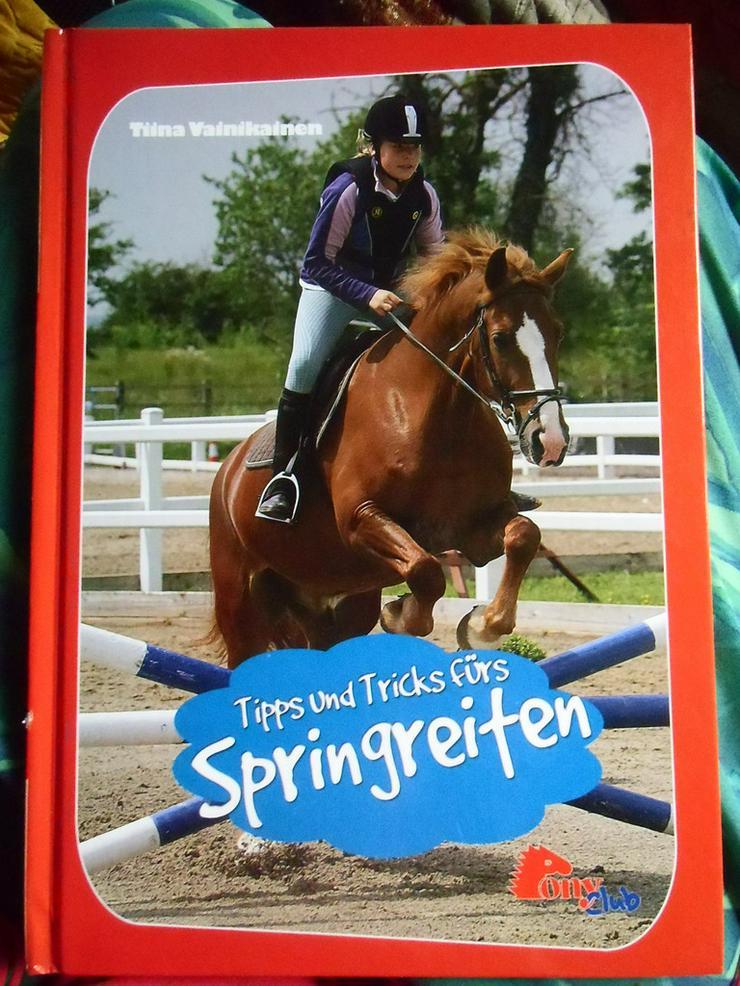 Tipps und Tricks fürs Springreiten - Tiere - Bild 1