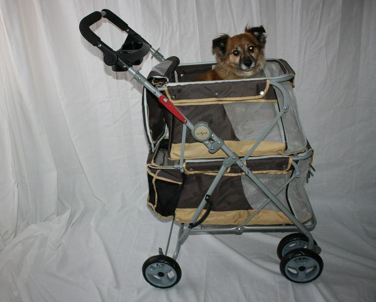 Hundebuggy Double beige 62 x 60 x 104 cm