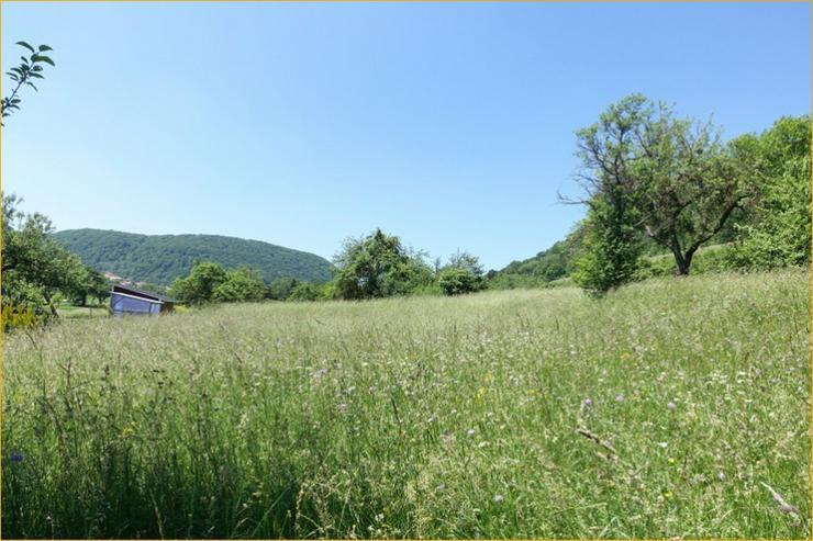 Provisionsfrei: Sahnegrundstück in Ortsrandlage von Bad Ditzenbach - Grundstück kaufen - Bild 1