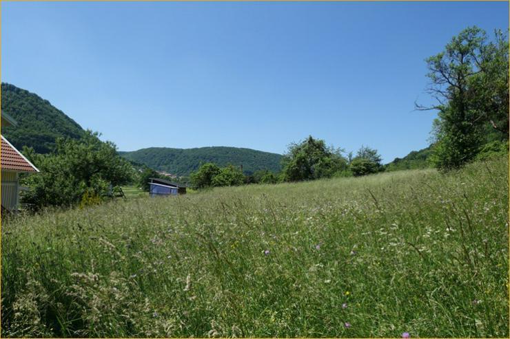 Bild 2: Provisionsfrei: Sahnegrundstück in Ortsrandlage von Bad Ditzenbach