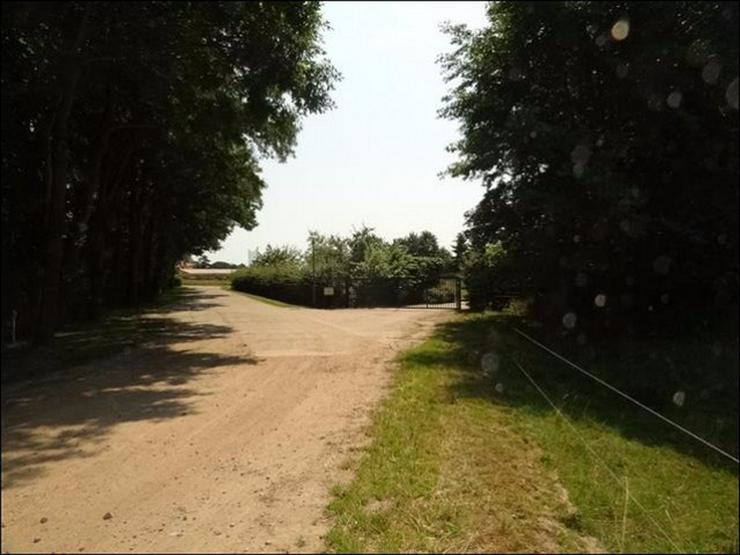 Bild 5: Bauland auf 2900 m² im Ostseebad in Zinnowitz für Wohnen und Gewerbe