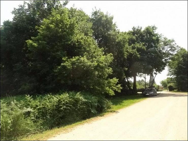 Bild 4: Bauland auf 2900 m² im Ostseebad in Zinnowitz für Wohnen und Gewerbe
