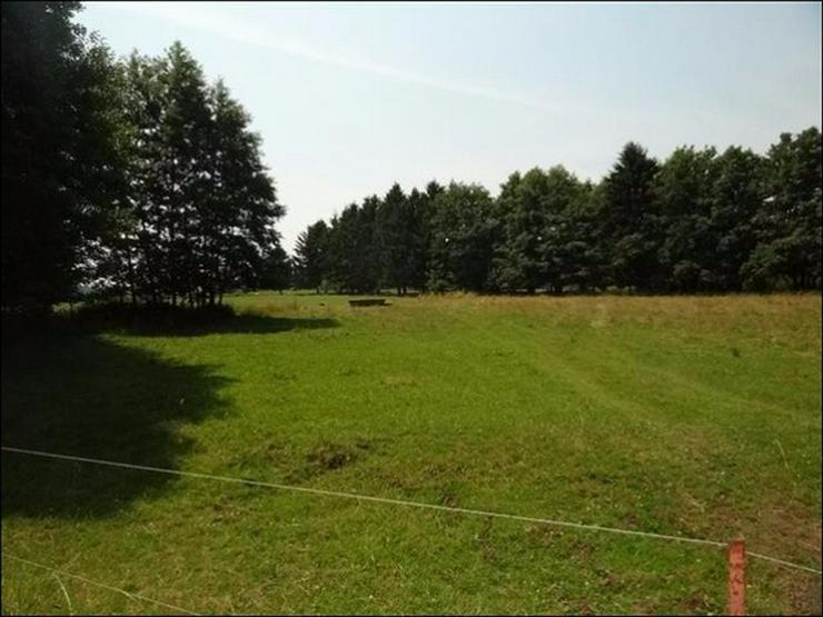 Bild 3: Bauland auf 2900 m² im Ostseebad in Zinnowitz für Wohnen und Gewerbe