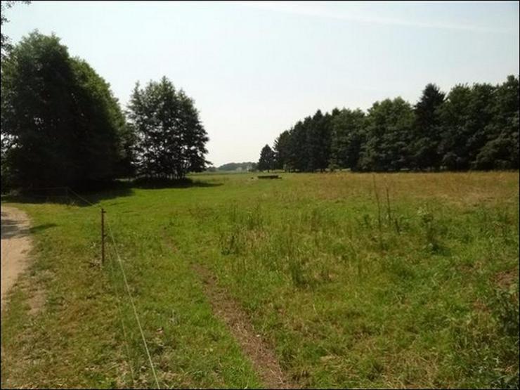 Bild 2: Bauland auf 2900 m² im Ostseebad in Zinnowitz für Wohnen und Gewerbe