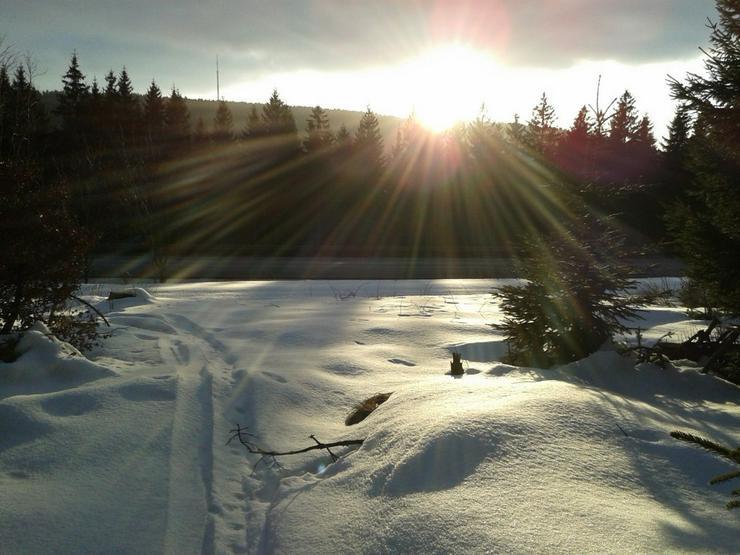 01.03.2020 Schneeschuh-Führung Fichtelgebirge