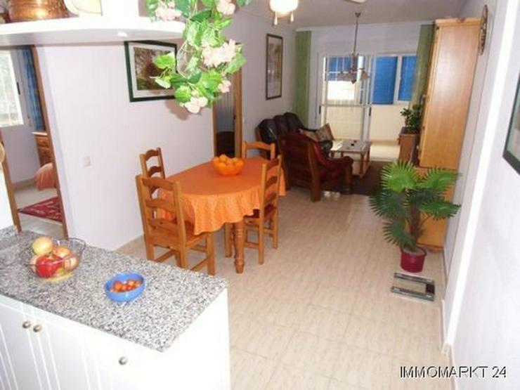 Bild 3: Großzügiges Appartement mit Gemeinschaftspool