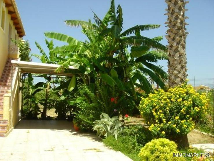 Bild 5: Villa mit Pool nur 300 m vom Strand