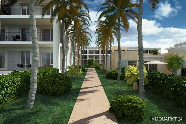 Bild 5: Exklusive Penthouse-Wohnungen in Anlage am Strand