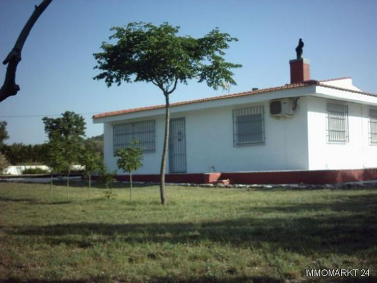 Bild 3: Gepflegtes Landhaus in wunderschöner Umgebung
