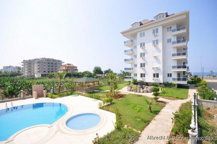 Bild 4: 4 Zimmer - Wohnung direkt am Strand von Kestel - Alanya