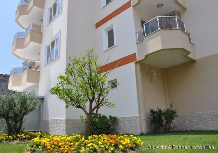 Bild 3: Meerblick Wohnungen in Cikcilli - Alanya in Zentraler Lage
