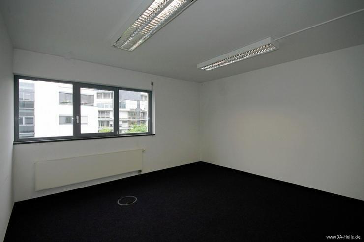 Bild 5: Bürofläche am Hallorenring