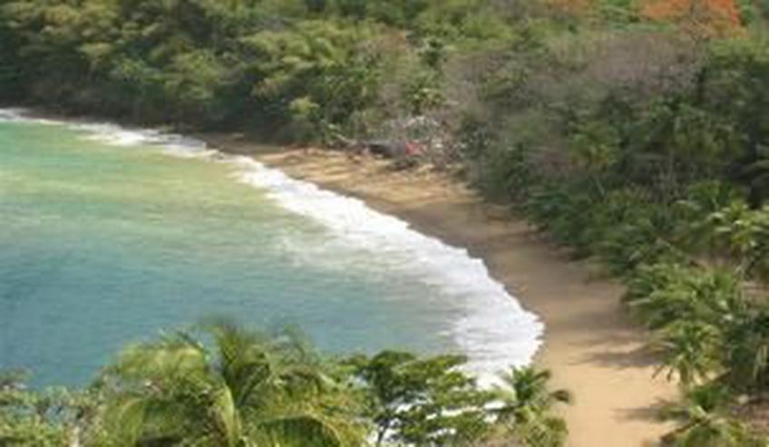 Karibik, Palmen, Strand und viel Ruhe (A174)