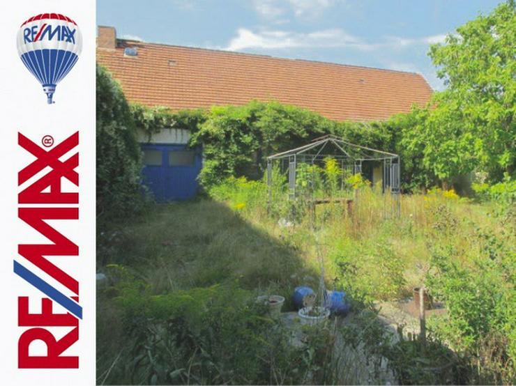 Bild 3: Vierseitenhof mit großem Grundstück