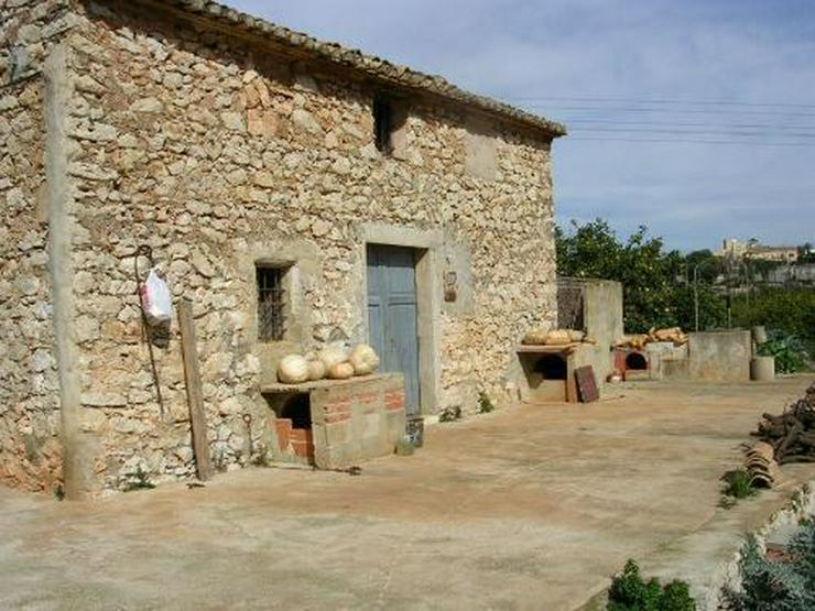 Bild 3: Grundstück am Rande der Ortschaft Beniarbeig