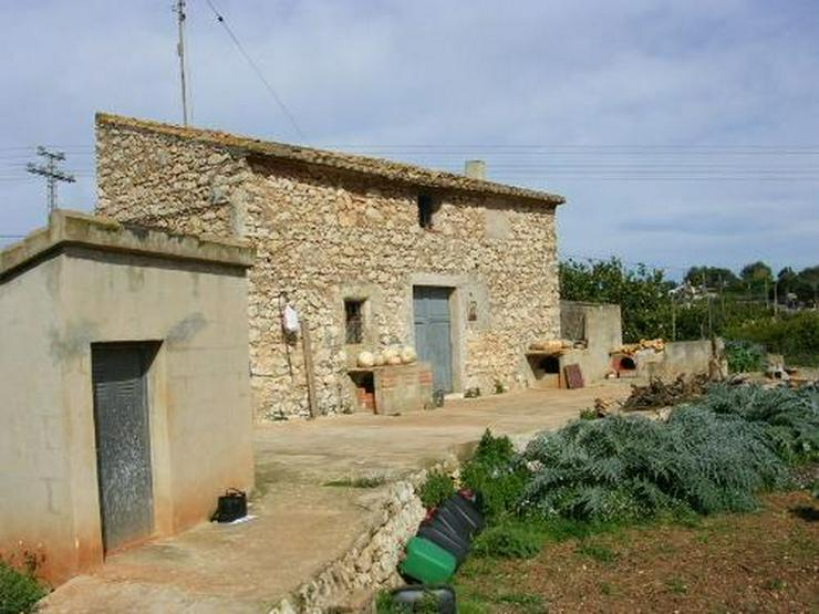 Bild 4: Grundstück am Rande der Ortschaft Beniarbeig