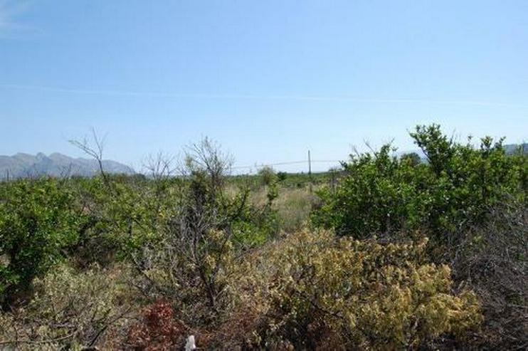 Rustikale Parzelle im Inland - Grundstück kaufen - Bild 1