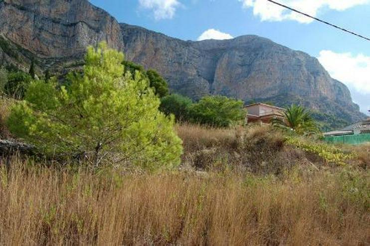 Bild 3: Grundstück am Montgo