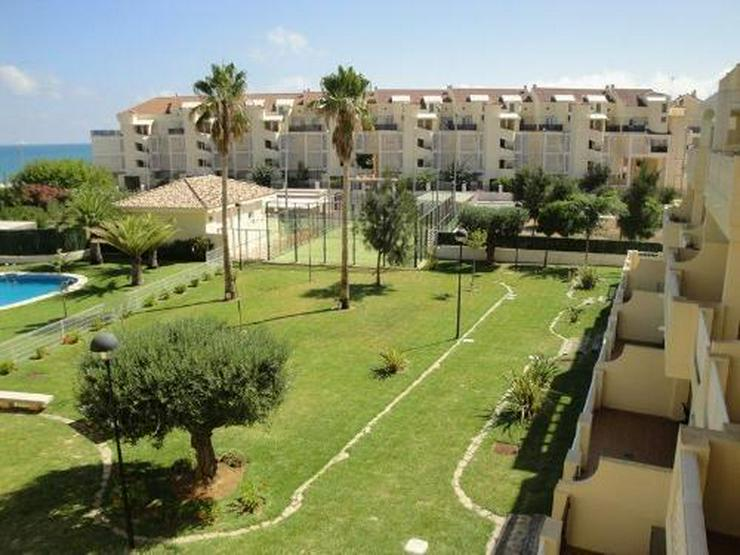 Bild 4: Appartement in erster Meerlinie in Las Marinas