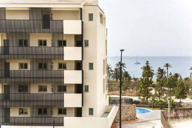 Bild 15: Exklusive 3-Zimmer-Wohnungen in wunderschöner Anlage am Strand