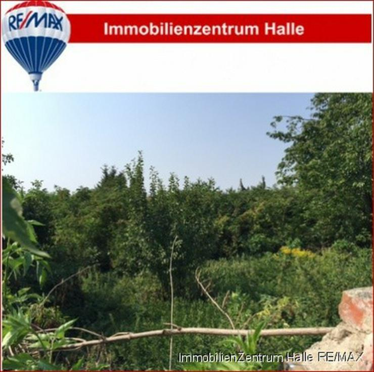 Idylisches Grundstück für Ihr Eigenheim !!! - Grundstück kaufen - Bild 1