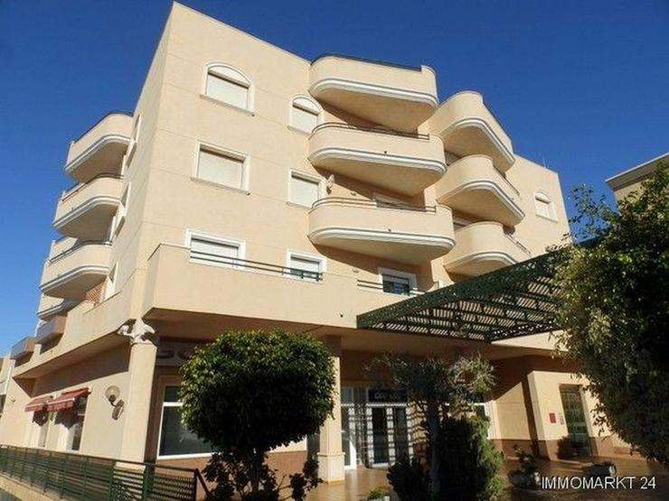 Südwärts ausgerichtetes Appartement mit Gemeinschaftspool - Wohnung kaufen - Bild 1