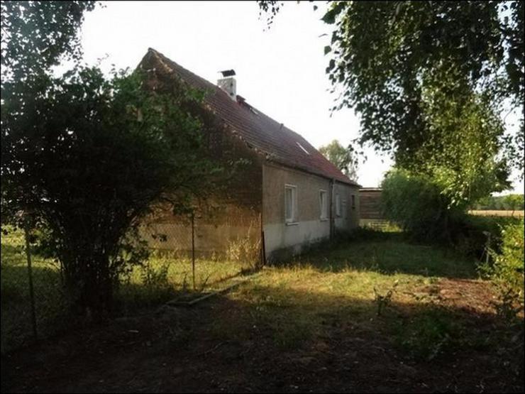 Bild 6: Einfamilienhaus und großer Hof in Krienke auf Usedom - bereit für neuen Eigentümer!
