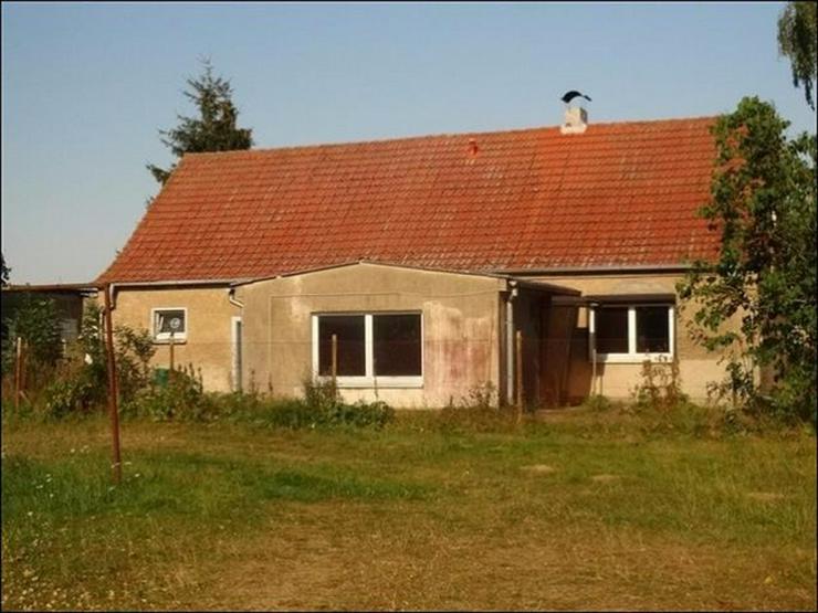 Bild 5: Einfamilienhaus und großer Hof in Krienke auf Usedom - bereit für neuen Eigentümer!