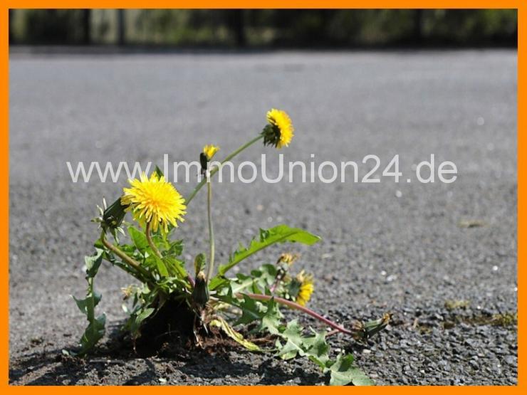 2. 1 0 0 qm asphaltiertes & eingezäuntes Gewerbegrundstück für 1,- EURO pro QM im Gewer...