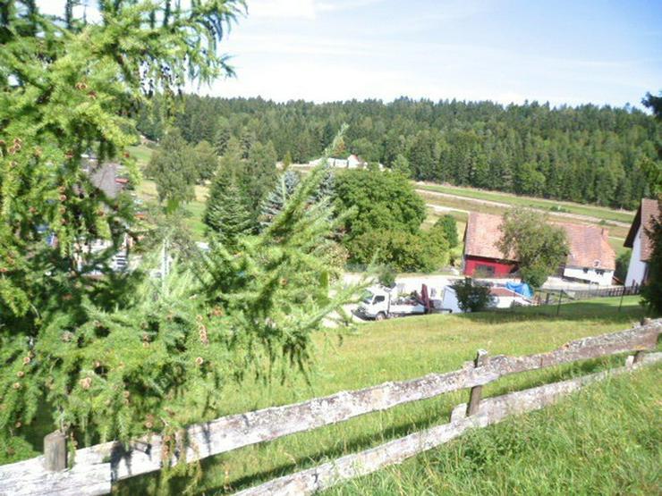 Bild 3: Erschlossenes Grundstück für Mehrfamilienhaus mit Fernsicht