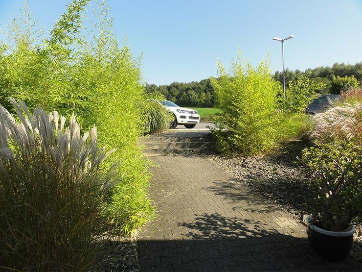 Bild 4: Ansprechende Gewerbehalle mit Bürotrakt in Recklinghausen-Berghausen - Gewerbepark Ortloh