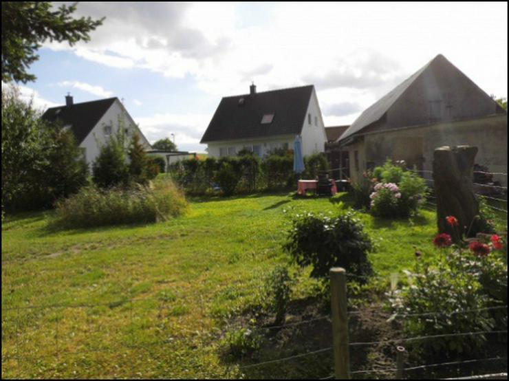 Bild 4: Einfamilienhaus im Günen mit Peeneblick