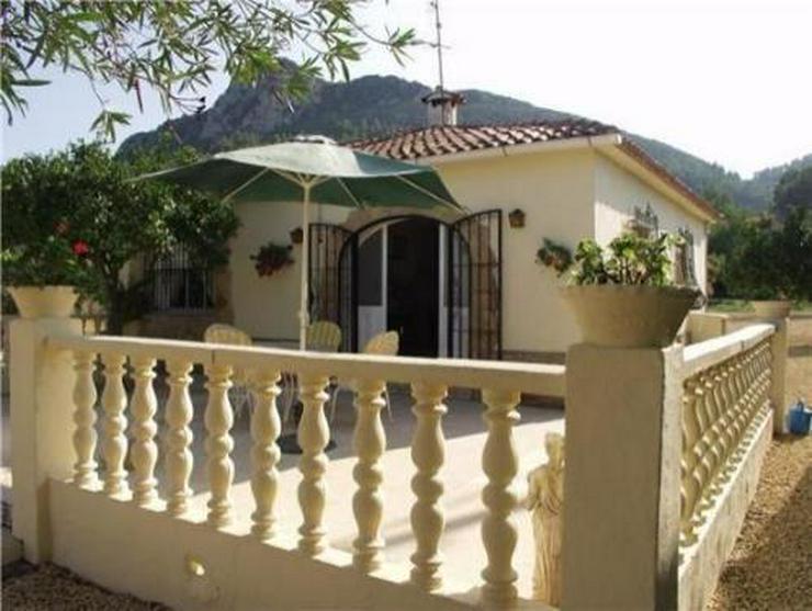 Bild 5: Kleine Landhaus-Villa am Rande von Orba