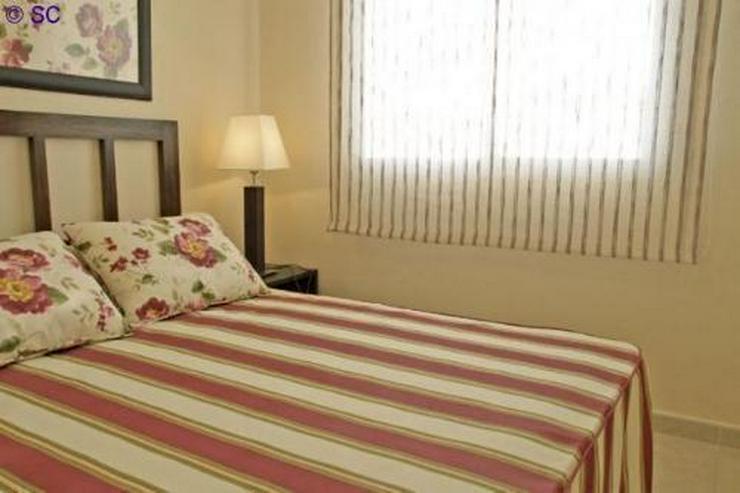 Bild 4: Penthouse-Wohnung in San Cayetano