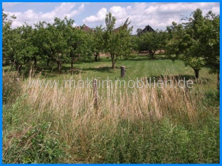 Bild 2: MAK Immobilien empfiehlt: Provisionsfrei!!!- nähe Werder/Havel. Bezahlbares Grundstück u...