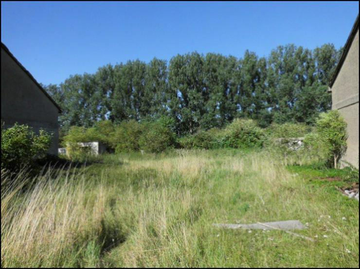 Bild 4: Bauland