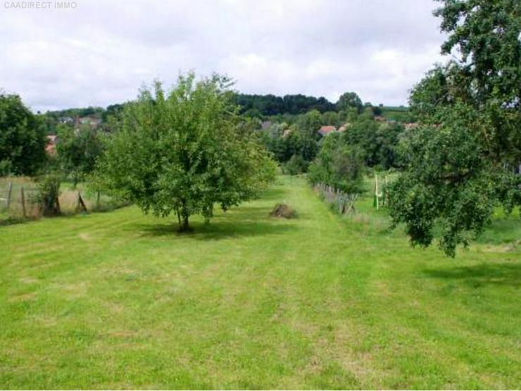 Bild 5: Bauernhaus im Dorfkern mit Nebengebäude u. Umschwung im Elsass - 18 km v/Basel 20 km v/We...