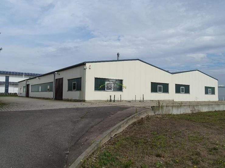 Ehemalige Metallproduktion in Hartha - Gewerbeimmobilie kaufen - Bild 1