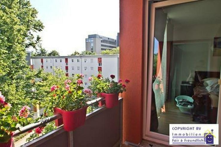 *WOHLFÜHLHEIM! Neubau, hochw. 2-Zi. mit Sonnenbalkon und offener Küche, am Aaper Wald* - Wohnung mieten - Bild 1
