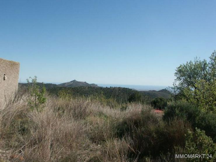 Bild 3: Grundstück mit Meerblick bei Tibi