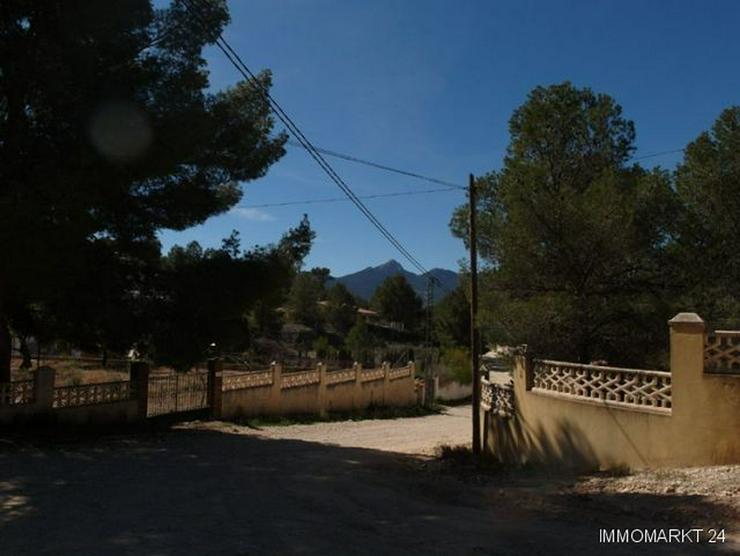 Bild 5: Baugrundstück mit schönem Ausblick bei Tibi