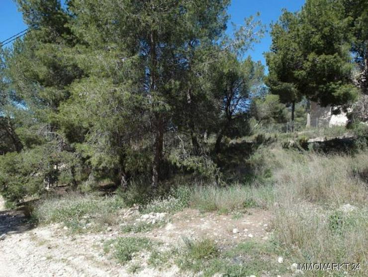 Bild 3: Baugrundstück mit schönem Ausblick bei Tibi