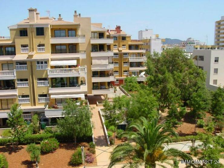 Bild 5: 4-Zimmer-Wohnungen nur 200 m vom wunderschönen Sandstrand