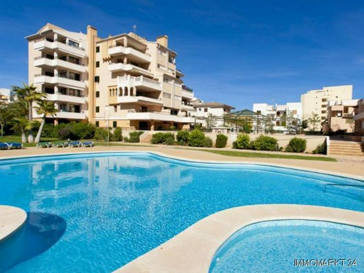 Bild 1: 4-Zimmer-Wohnungen nur 200 m vom wunderschönen Sandstrand