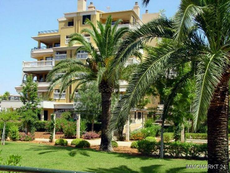 Bild 2: 4-Zimmer-Wohnungen nur 200 m vom wunderschönen Sandstrand